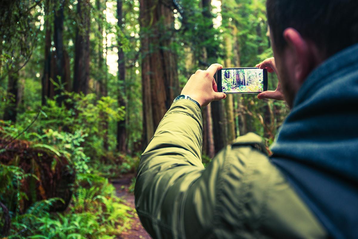 Foto fantastiche natura con smartphone
